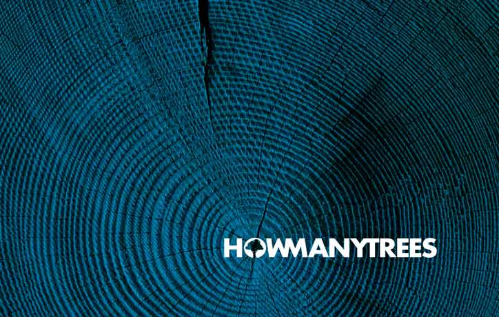 Logo Design HowManyTrees